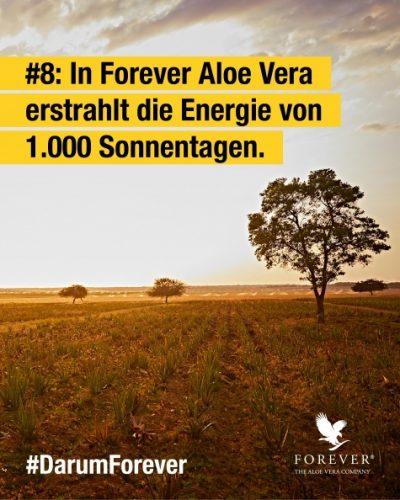 foreverliving-aloe-vera-energie-1000sonnentage