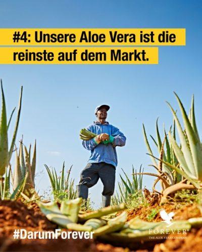 foreverliving-reinste-aloe-vera